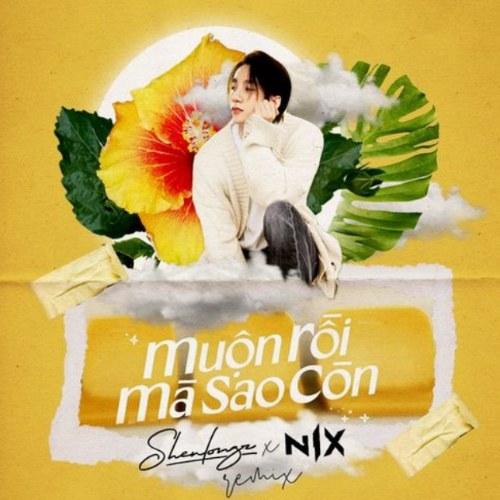 Muộn Rồi Mà Sao Còn (Shenlongz & Nix Remix) (Single)