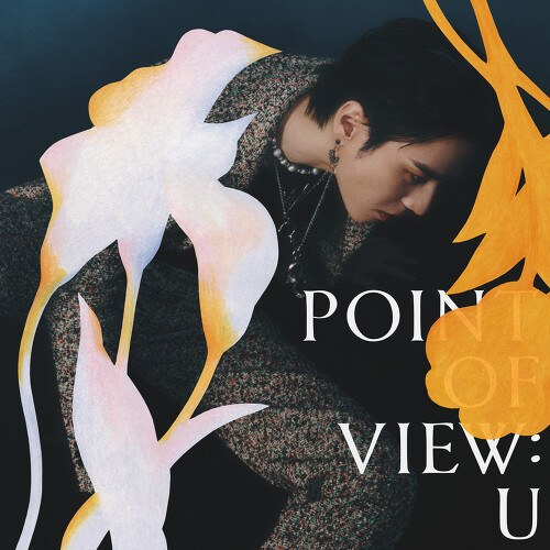 Point Of View: U (EP)