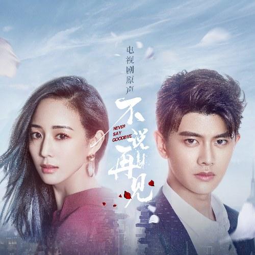 Không Nói Tạm Biệt (不说再见 电视剧原声带) (OST)